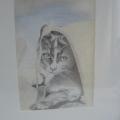 potlood/pastel tekening 40x30 cm